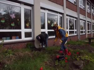 PGS-Meppen Gartenaktion 2016 001